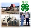 picture of 4H symbol and farm animals