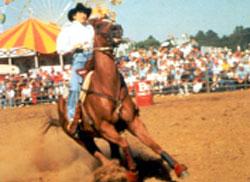 Benson Rodeo