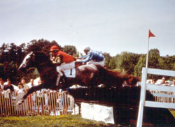 Brookhill Steeplechase